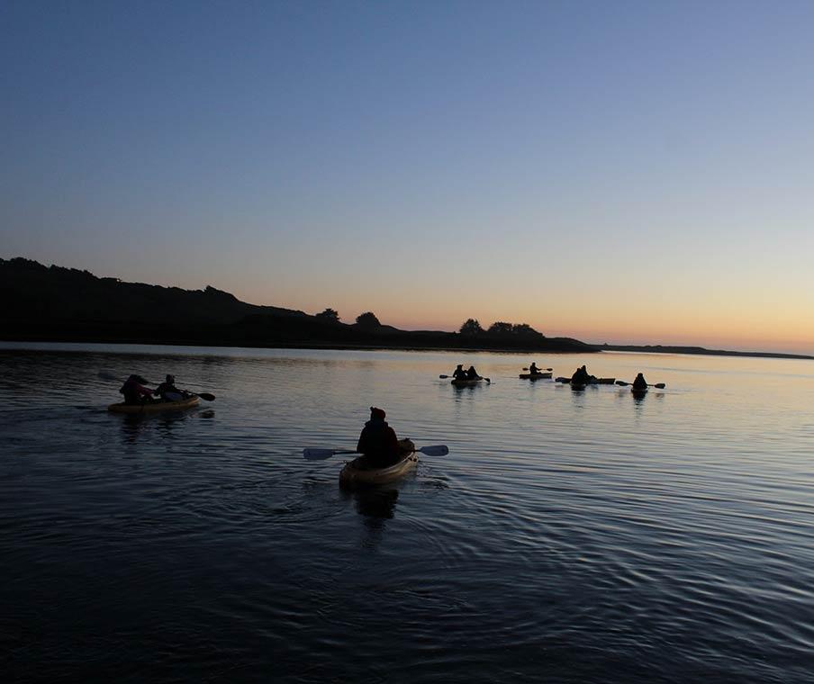 Kayaking On The Napa River