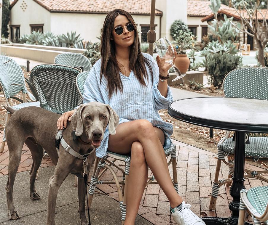 dog friendly hotels san diego, pet friendly hotels la jolla