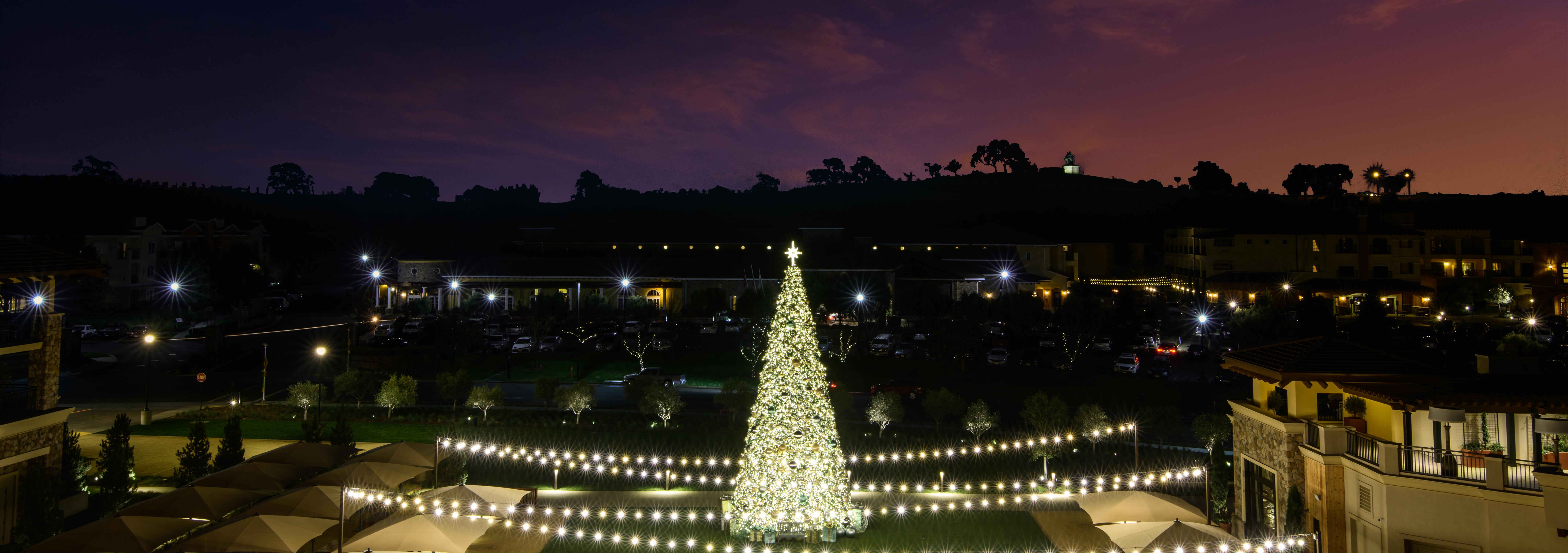 Christmas Tree at Vista Collina Resort