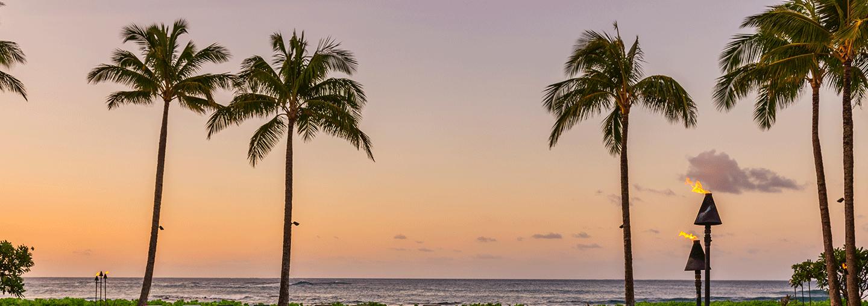 Poipu Sunset Palms