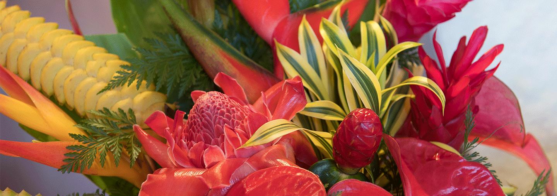 Red Salt Floral