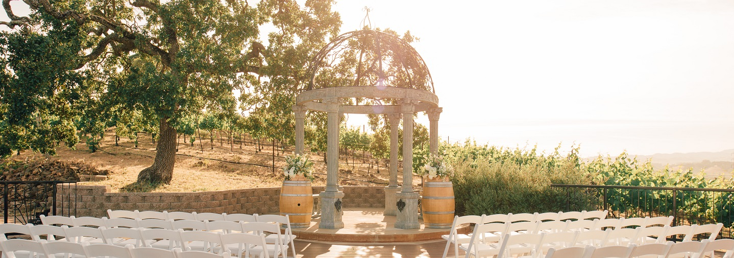 Vineyard Deck Wedding at The Meritage Resort and Spa