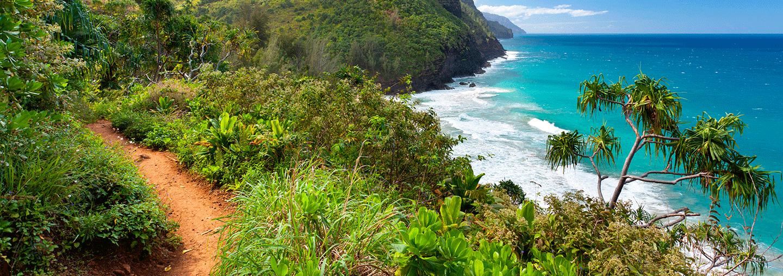 Napali Coast Line