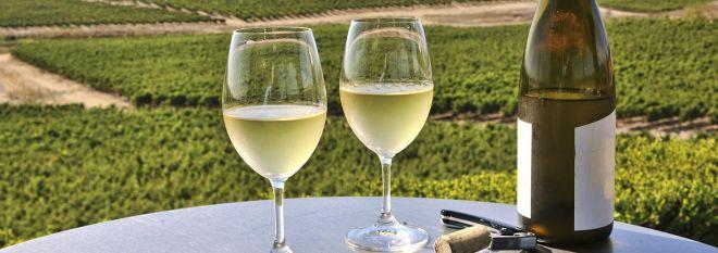 Mobile: Wine in Napa Valley Vineyards
