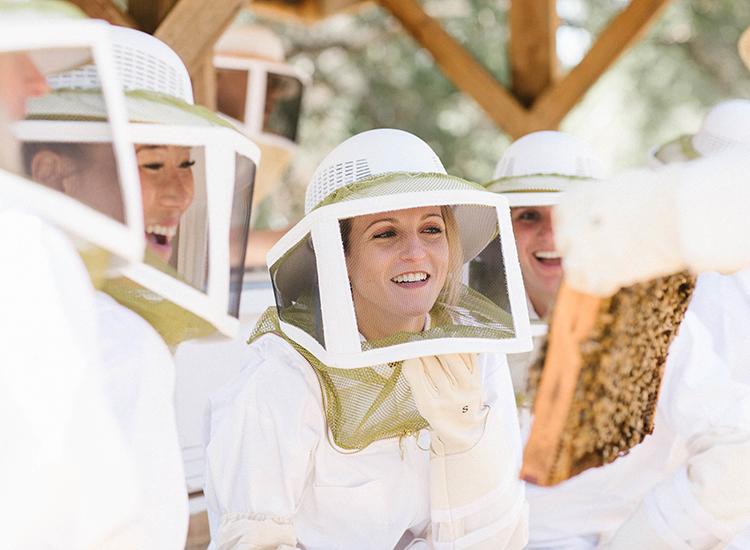 Beekeeping & Honey Tasting